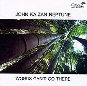 John Kaizan Neptune - Words Can't Go There