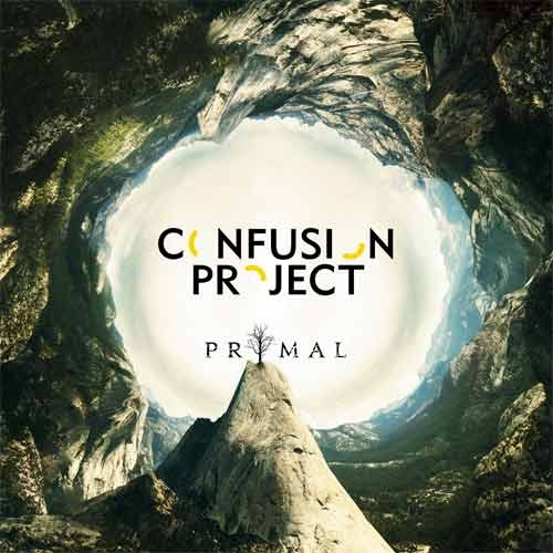 Confusion Project - Primal
