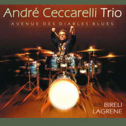 Andre Ceccarelli - Avenue Des Diables Blues